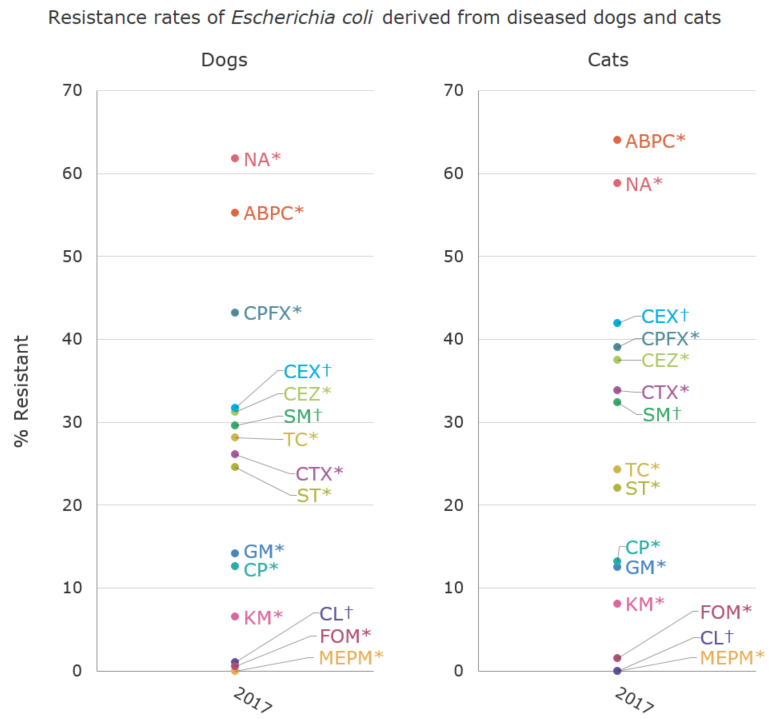 Resistance rates of Escherichia coli derived from diseased dogs and cats (%)[the proportion of antimicrobial resistance in animals]